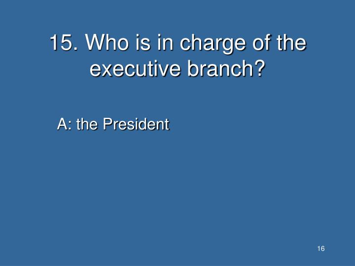15. Who is in charge of the executive branch?