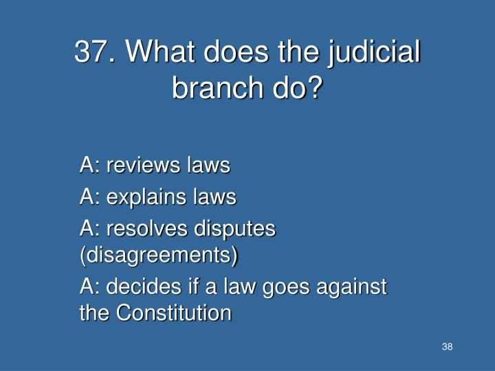 37. What does the judicial branch do?
