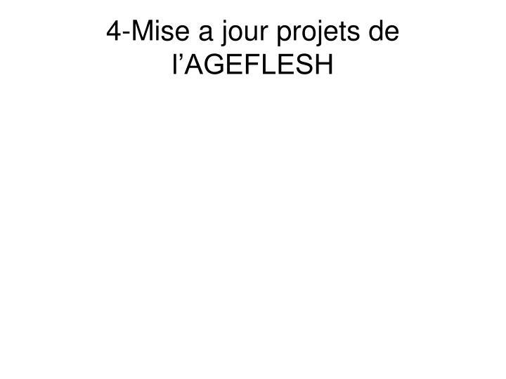 4-Mise a jour projets de l'AGEFLESH
