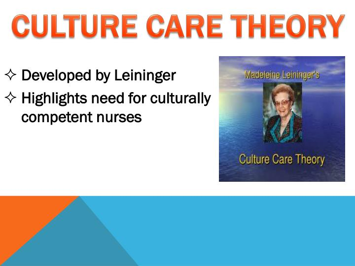 A Culturally Competent Nursing Environment