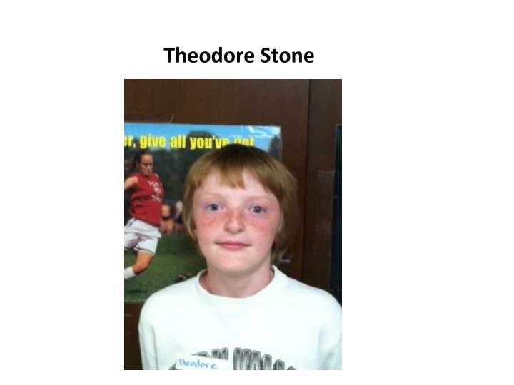 Theodore Stone