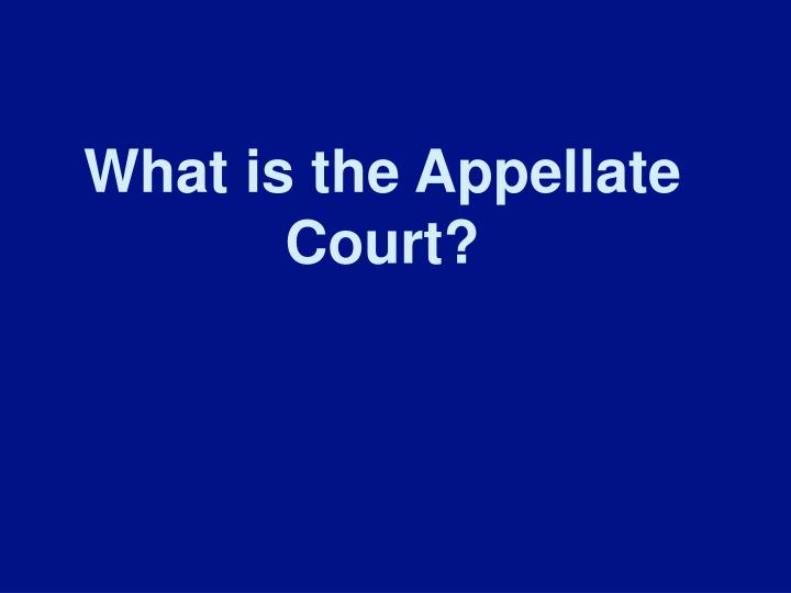 What is the Appellate Court?