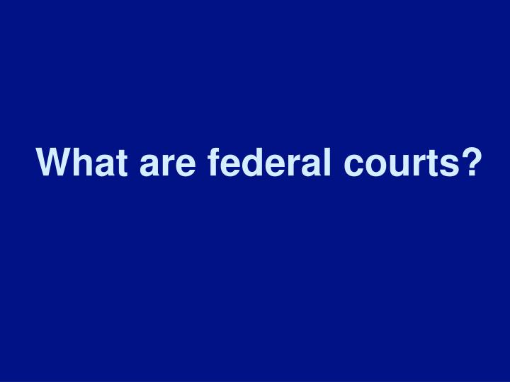 What are federal courts?
