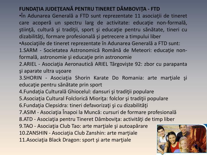 FUNDAȚIA JUDEȚEANĂ PENTRU TINERET DÂMBOVIȚA - FTD