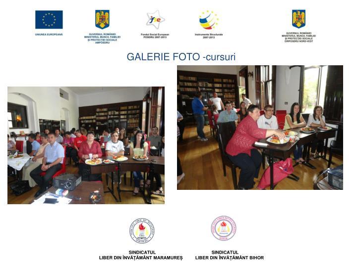 GALERIE FOTO -cursuri