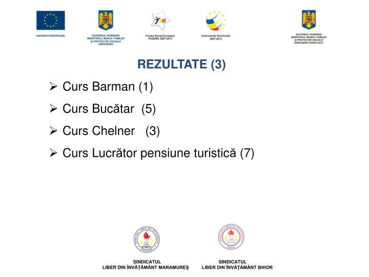 REZULTATE (3)