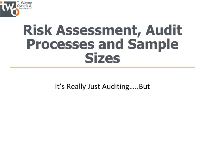 Risk Assessment, Audit Processes and Sample Sizes