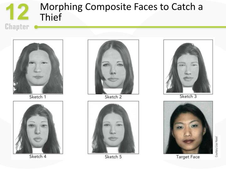 Morphing Composite Faces to Catch a Thief