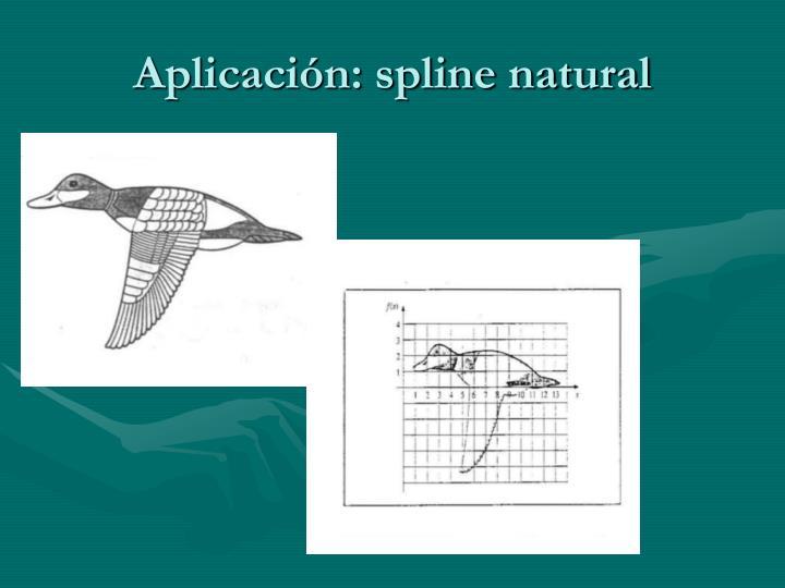 Aplicación: spline natural