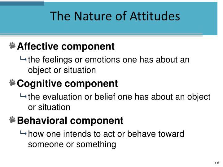 attitude and job satisfaction presentation
