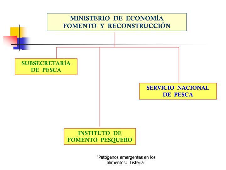 MINISTERIO  DE  ECONOMÍA         FOMENTO  Y  RECONSTRUCCIÓN