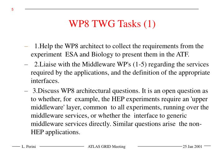 WP8 TWG Tasks (1)