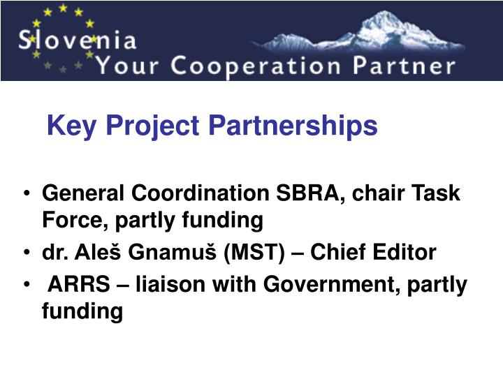 Key Project Partnerships