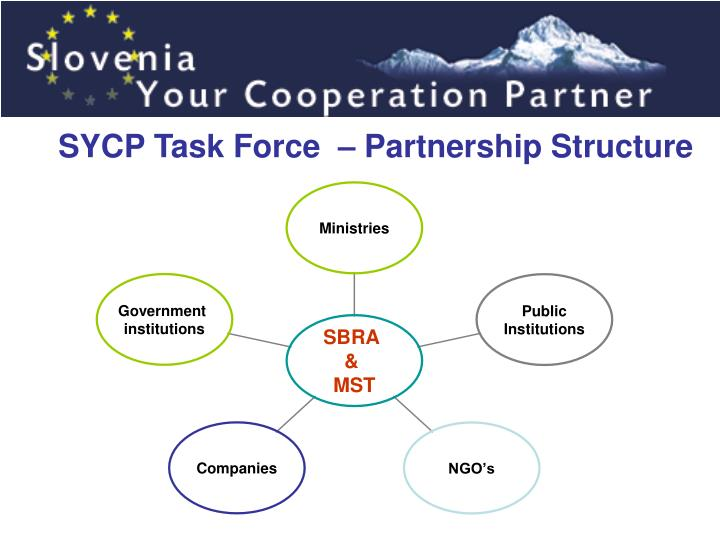 SYCP Task Force  – Partnership Structure