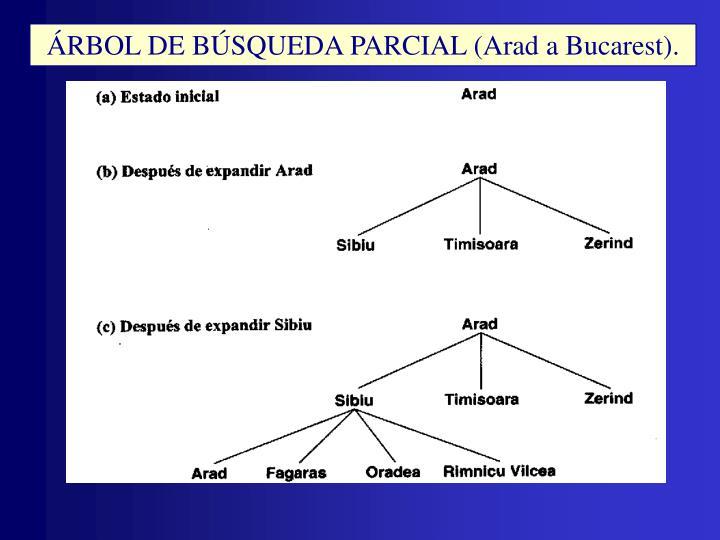 ÁRBOL DE BÚSQUEDA PARCIAL (Arad a Bucarest).