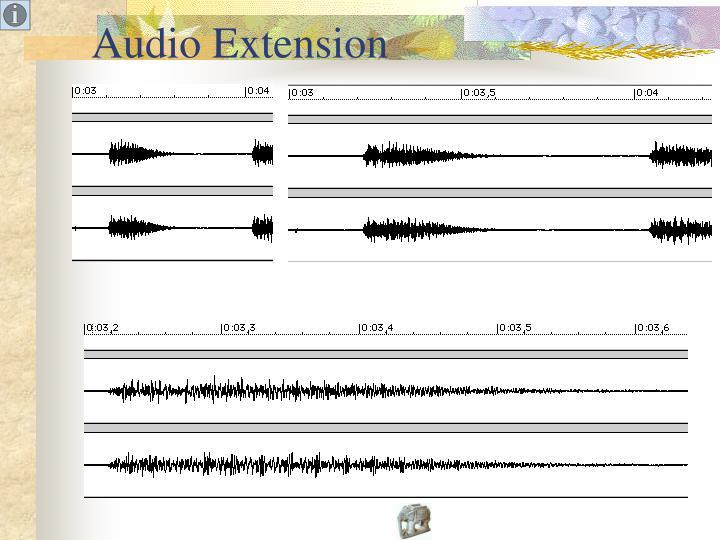 Audio Extension