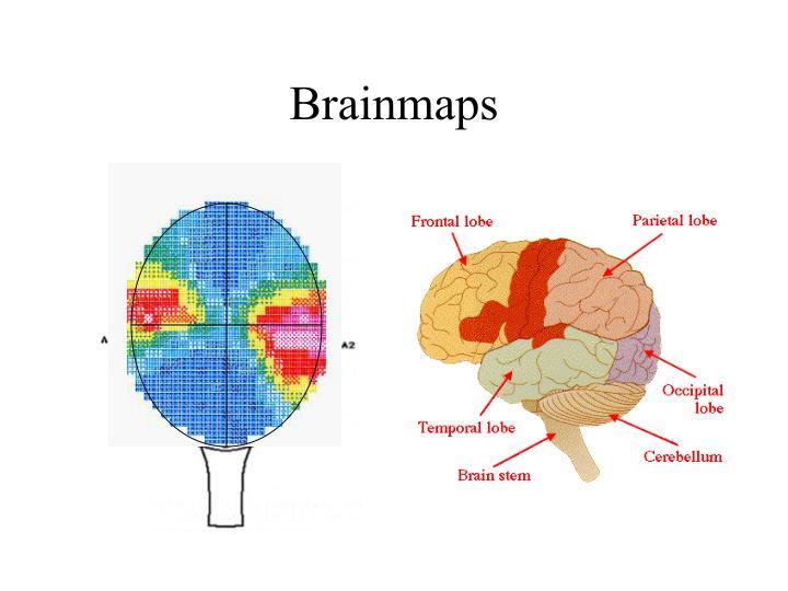 Brainmaps