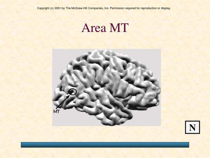 Area MT
