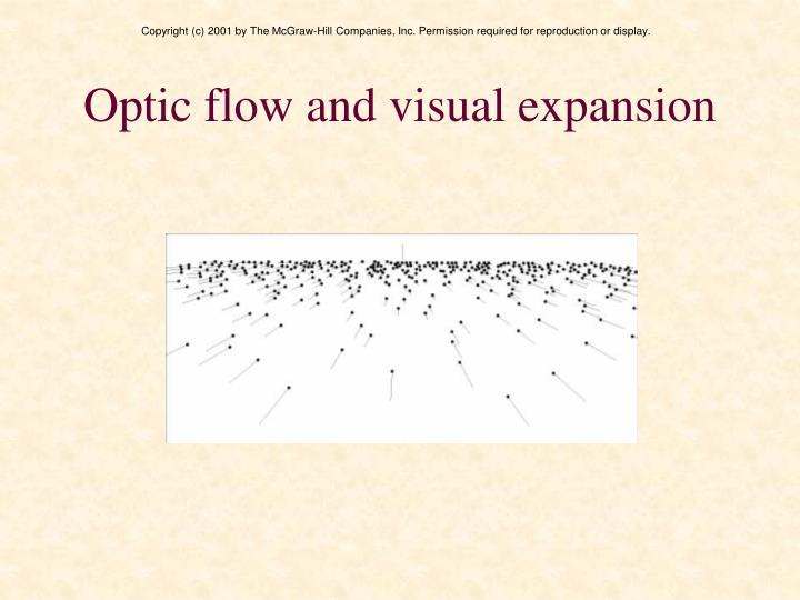 Optic flow and visual expansion