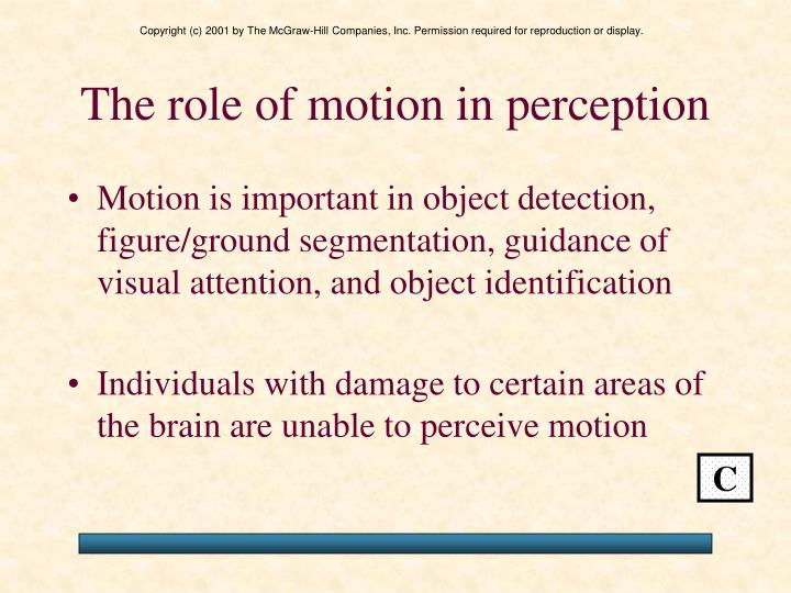The role of motion in perception