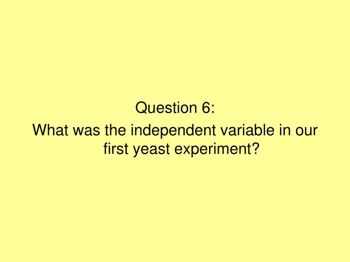 Question 6:
