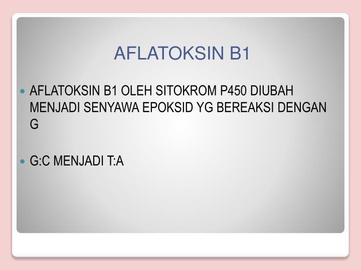 AFLATOKSIN B1 OLEH SITOKROM P450 DIUBAH MENJADI SENYAWA EPOKSID YG BEREAKSI DENGAN G