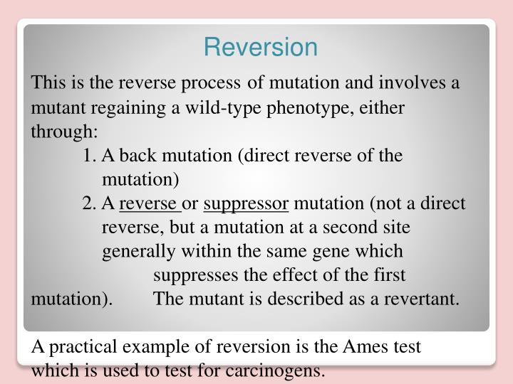 This is the reverse process