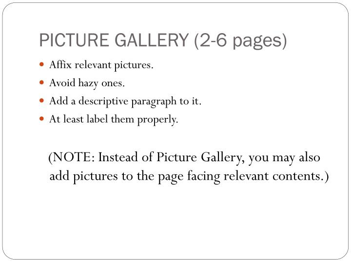 PICTURE GALLERY (2-6 pages)