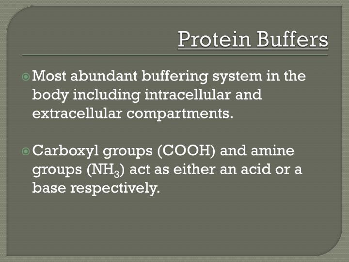 Protein Buffers