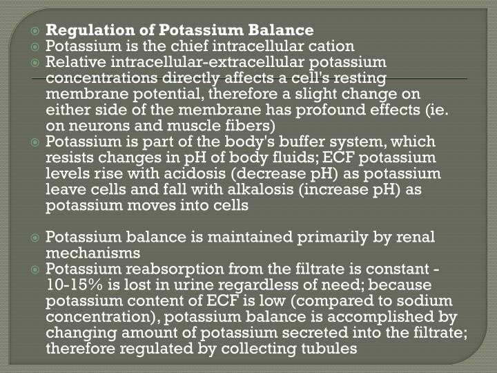 Regulation of Potassium Balance