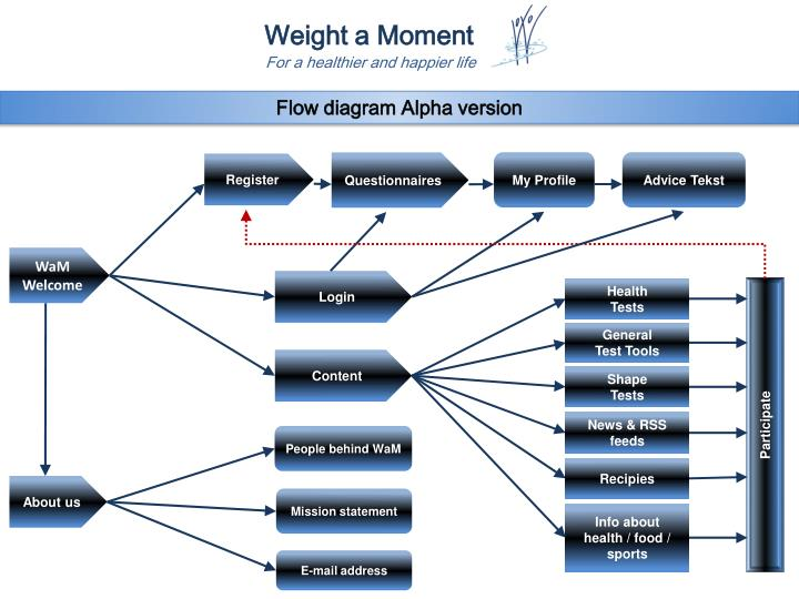 Flow diagram Alpha version