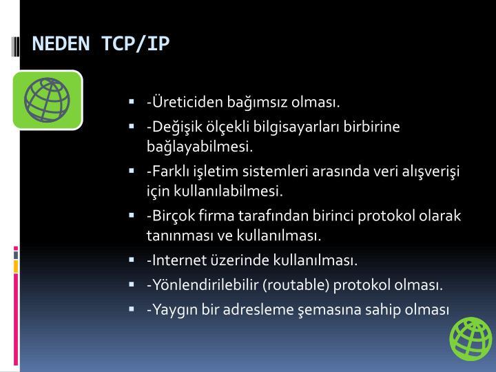 NEDEN TCP/IP