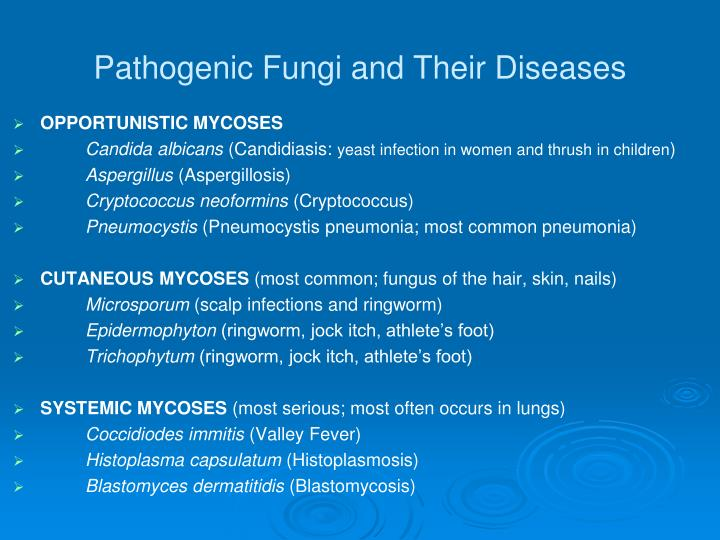 Pathogenic Fungi and Their Diseases