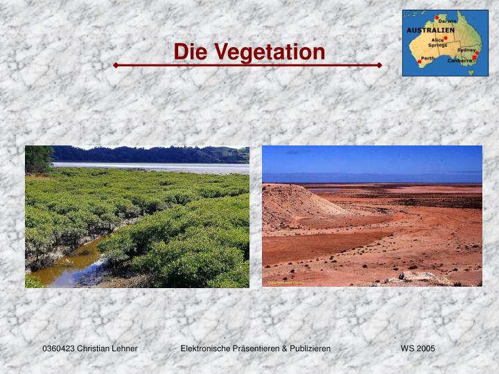 Die Vegetation