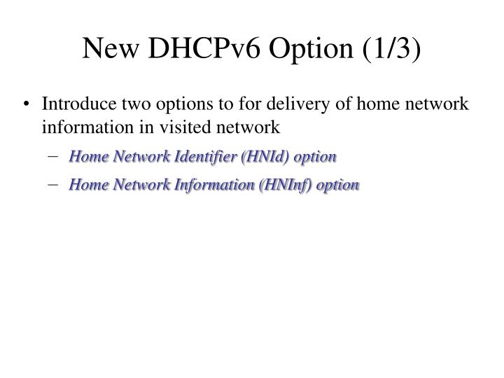 New dhcpv6 option 1 3