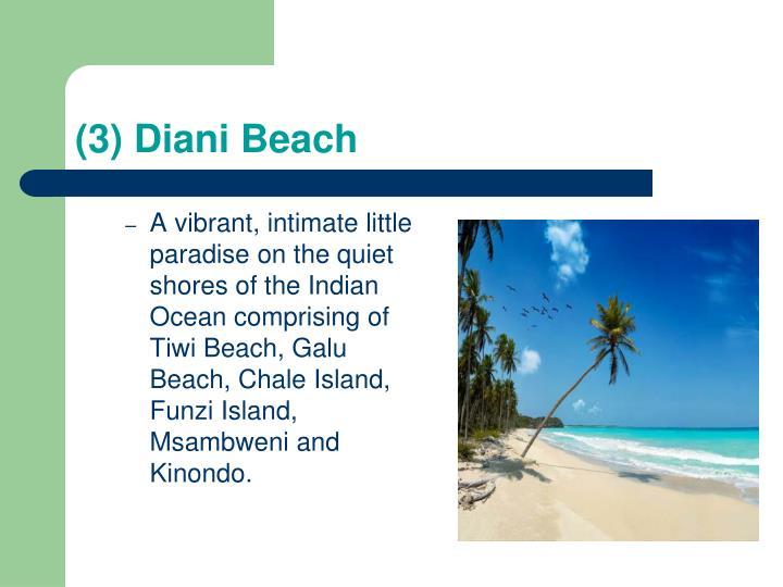 (3) Diani Beach