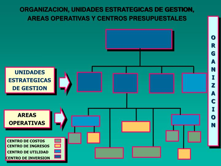 ORGANIZACION, UNIDADES ESTRATEGICAS DE GESTION,