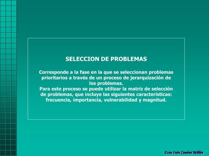 SELECCION DE PROBLEMAS