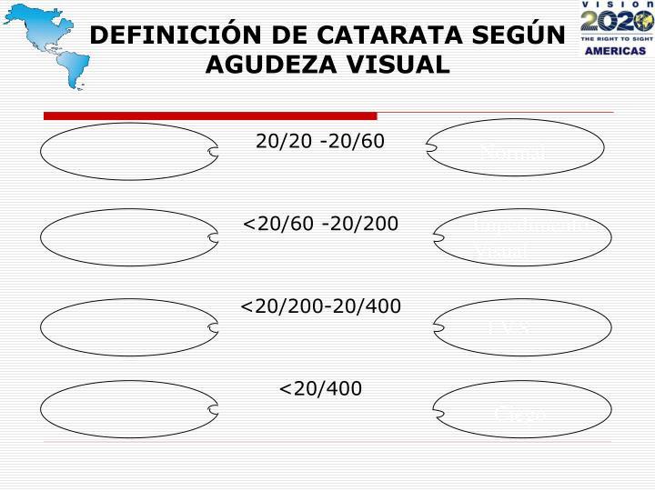 DEFINICIÓN DE CATARATA SEGÚN AGUDEZA VISUAL