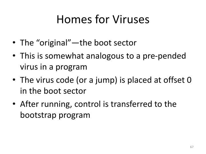 Homes for Viruses