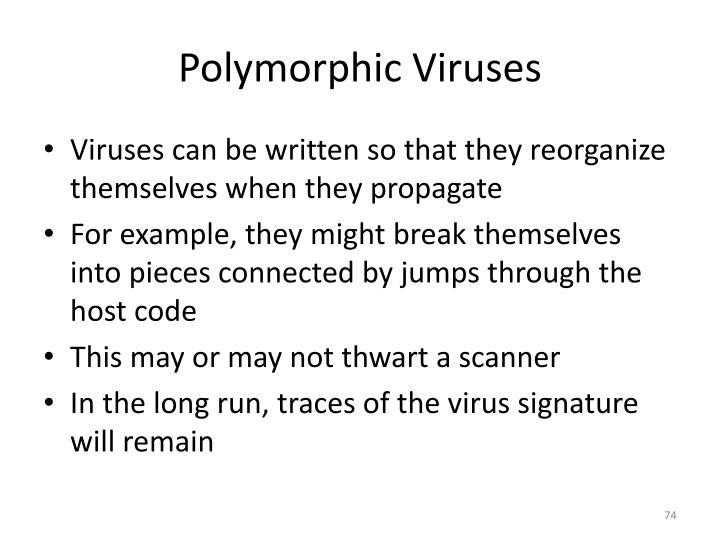 Polymorphic Viruses