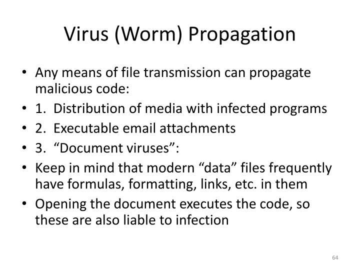 Virus (Worm) Propagation