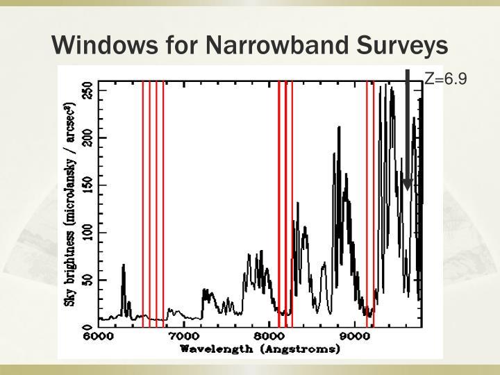 Windows for Narrowband Surveys