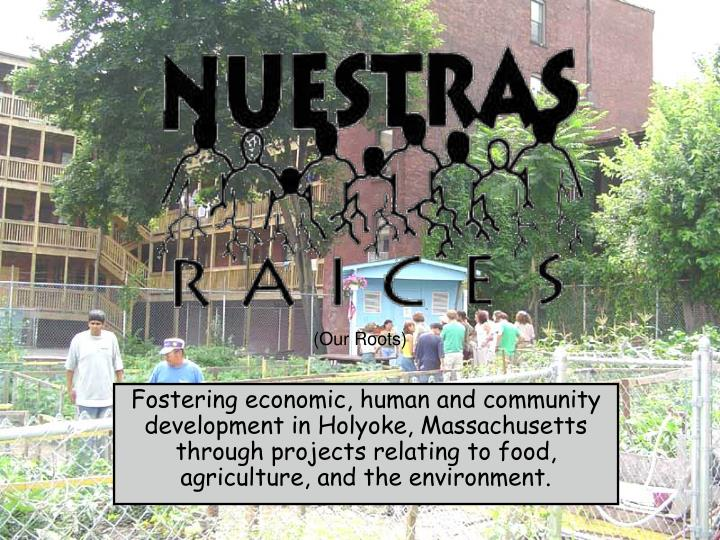 Fostering economic, human and community development in Holyoke, Massachusetts through projects relat...