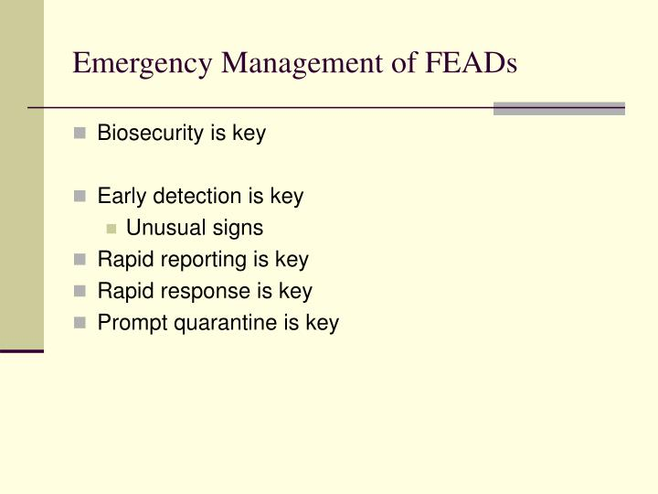 Emergency Management of FEADs