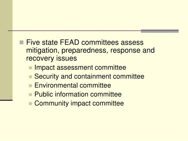 Five state FEAD committees assess mitigation, preparedness, response and recovery issues