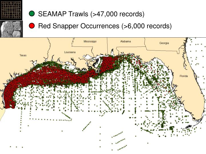 SEAMAP Trawls (>47,000 records)