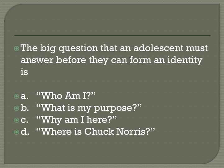 The big question that an adolescent must answer before they can form an identity is