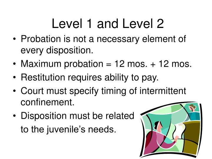 Level 1 and Level 2