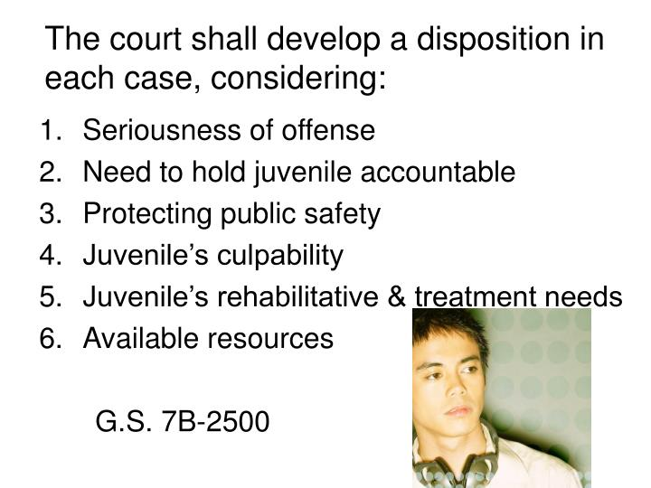 The court shall develop a disposition in each case, considering: